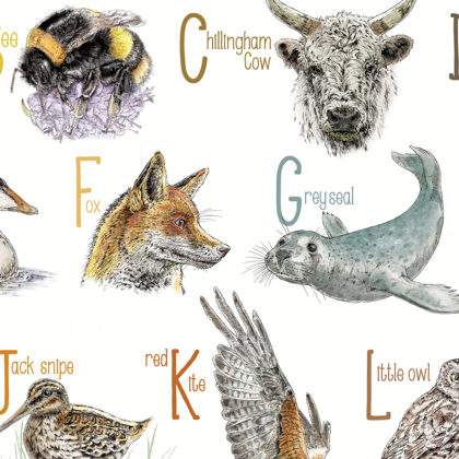 Northumbrian Animal Alphabet (close up) All rights reserved.