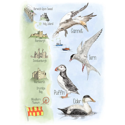 Birds of Northumberland map. All rights reserved.